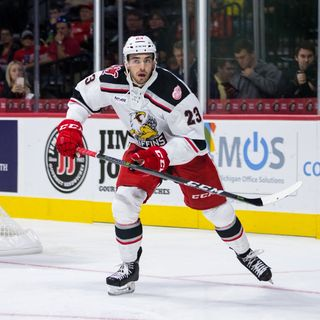 Dominic Turgeon - Grand Rapids Griffins Forward