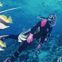 Scuba Diving with James McMullin & Catalina Island Hotels with Cathleen Gosselin