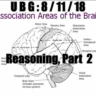 The Unpleasant Blind Guy : 8/11/18 - Reasoning, Part  2