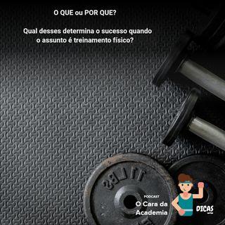 095 O QUE ou POR QUE? Qual desses determina o sucesso quando o assunto é treinamento físico?