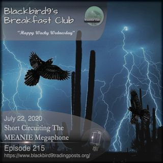 Short Circuiting The MEANIE Megaphone - Blackbird9 Podcast