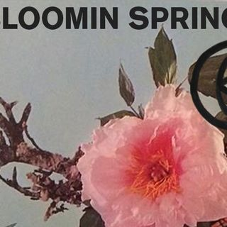 'Private Sector': A-Bloomin' Spring Jamz