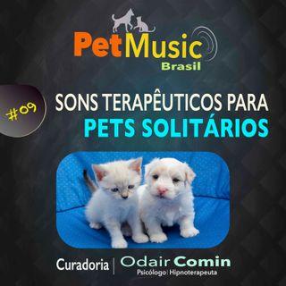 #09 Sons Terapêuticos para Pets que ficam Sozinhos