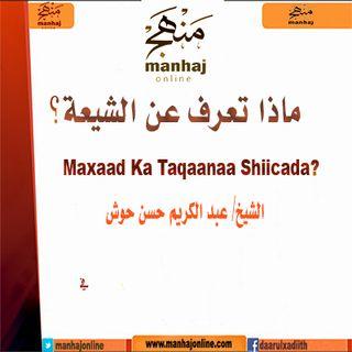 Maxaad Ka Taqaanaa Shiicada?
