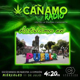 Canamo Radio Edicion14