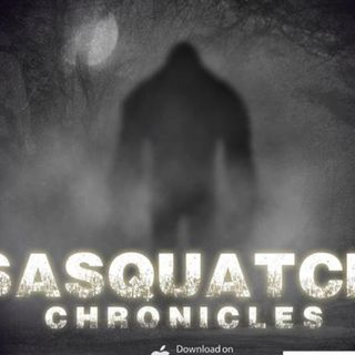 SC EP:20 Finding Sasquatch Tracks