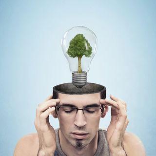 L325: Todas las cosas que creo ver son reflejos de ideas.