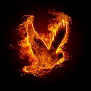 Boży Ogień - Tomasz Guńka