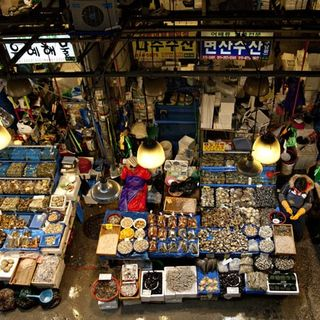 Battle For Seoul's Noryangjin Fish Market