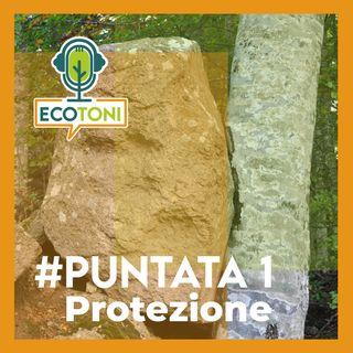 Puntata 1 - Protezione