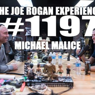 #1197 - Michael Malice