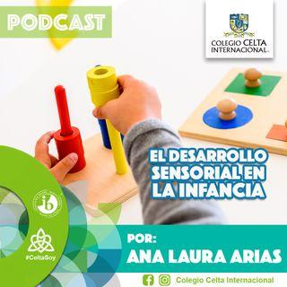 Podcast 17 El desarrollo sensorial en la infancia