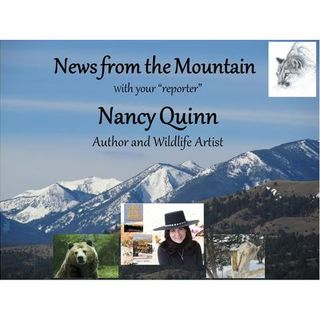 News From the Mountain With Author and Wild Life Artist Nancy Quinn