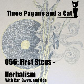 Episode 056: First Steps: Herbalism