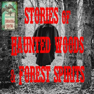 Stories of Haunted Woods and Forest Spirits | Podcast E112