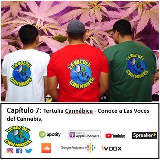 Capítulo 7: Tertulia Cannábica - Conoce a Las Voces del Cannabis