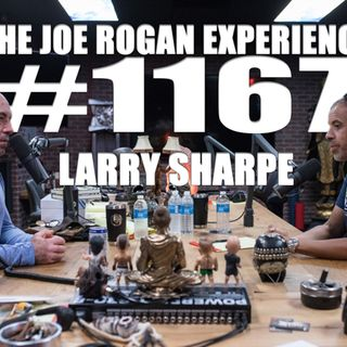 #1167 - Larry Sharpe