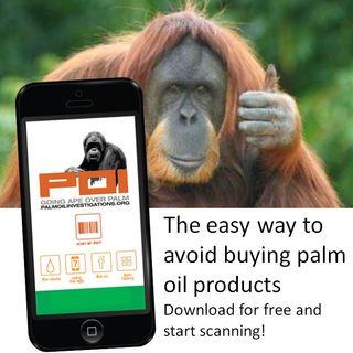 Youth Radio - Palm Oil App Lorinda Jane