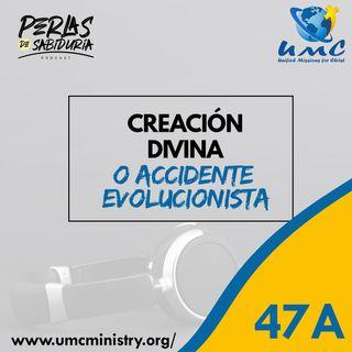 47A Creación Divina O Accidente Evolucionista
