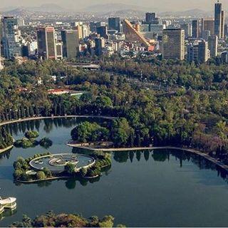 CDMX adjudica el primer contrato para el Complejo Cultural Bosque de Chapultepec.