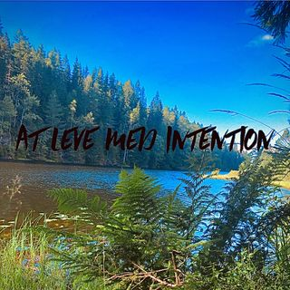 At leve med intention