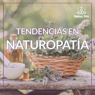 Tendencia del día: NATUROPATIA Colaborador: Paola Rus- La planta del perejil
