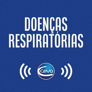 Respiratório #05 Considerações finais sobre a doença respiratória bovina