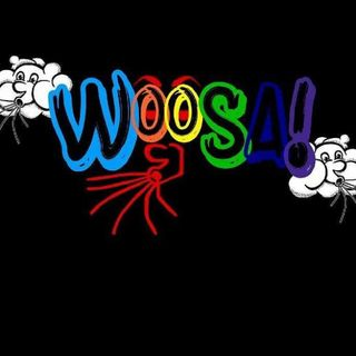 WOOSAWORLD RADIO