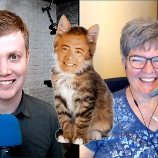 Windows Weekly 630: The Cat Came Back