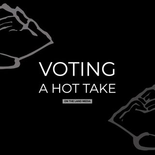 voting - a hot take
