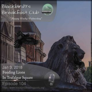 Feeding Lions In Trafalgar Square - Blackbird9 Podcast