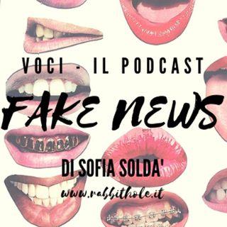 3 - Fake news