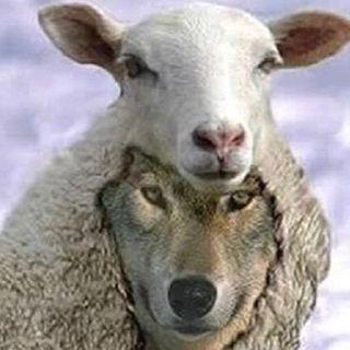 L'eclissi della fede causata da pastori indegni. Maria Valtorta