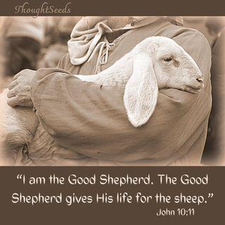Episode 65: The Good Shepherd, Part 1