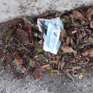 #sarnano Gli effetti del covid sull'ambiente