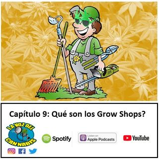 Capítulo 9: ¿Qué son los Grow Shops?