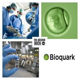 Interviewee #8 - Bioquark's Ira Pastor On Stem Cell & Defeating Chronic Illnesses