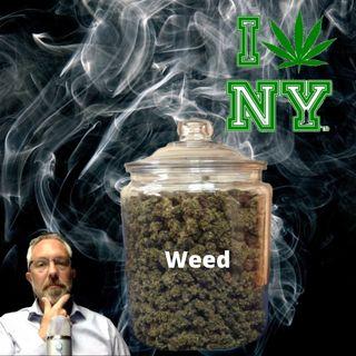New York's CRAZY MMJ Program Exposed