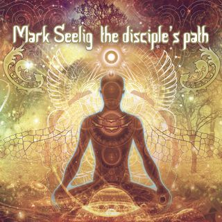 Mark Seelig ~ The Disciple's Path (interview + music mix)