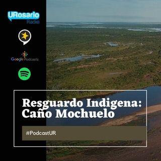 Reconozcamos nuestra identidad con la exposición virtual Resguardo Indígena Caño Mochuelo: Universo en Peligro