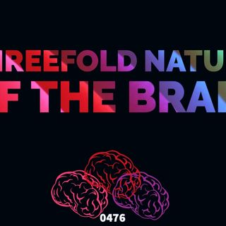 Whence Came You? - 0476 - Threefold Nature of the Brain