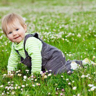 Quel mazzolin di fiori - Io, mio figlio e la primavera
