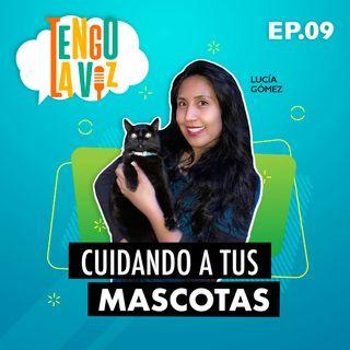 E9. Cuidando a tus Mascotas