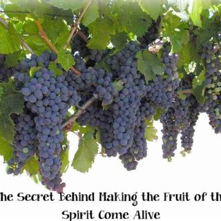 The Secret of Serving The Lord As A Seed