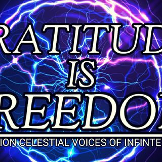 POWERFUL GRATITUDE AFFIRMATIONS | I AM FREEDOM