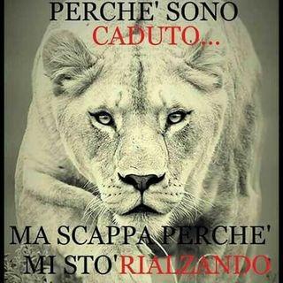 """ITALIA radiomusica - AGLI ITALIANI che hanno lottato e che lottano per la libertà e la legalità """"no al covidiotismo"""" - liscio e cumbia"""