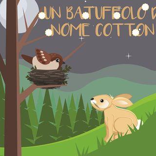 6 - Un batuffolo di nome Cotton