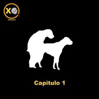 CAP 1: Piloto