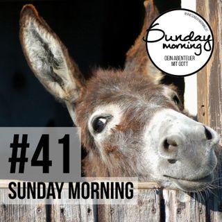 #41 - Von Palmen, Eseln und der großen Wende
