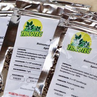 Bioplaguicida Tricotec para el control de patógenos en los cultivos de tomate, lechuga y arroz